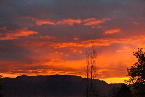 Sunrise over the Sandias seen from my patio in Corrales, New Mexico.