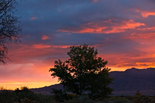 Sunrise seen from my patio in Corrales, New Mexico.