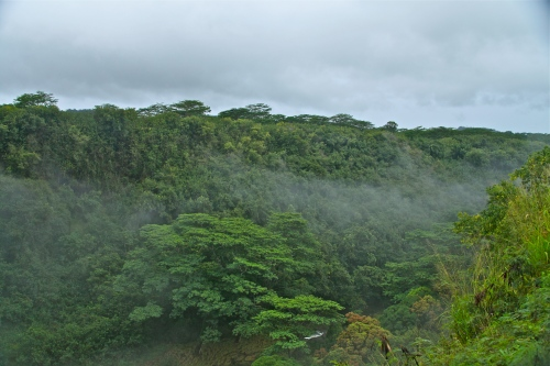 Cloud forest at Wailua Falls, near Kapaa, Kauai, Hawaii.