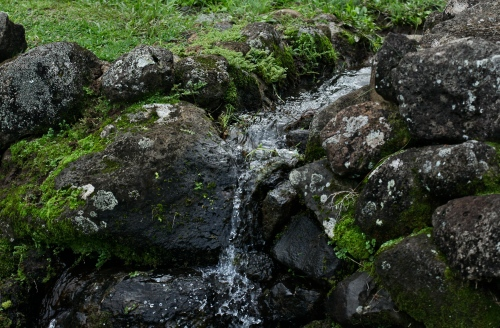 Peaceful waterfall feature in the kalo garden at Limahuli Garden Ha'ena, Kaua'i.