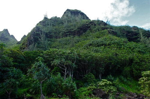 Makana Mountain ridge, Limahuli Garden, Ha'ena, Kaua'i.