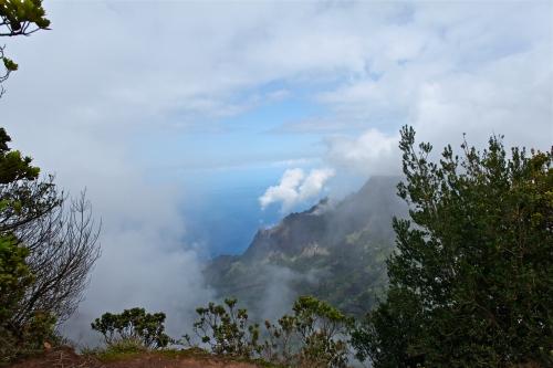 Pu'u o Kila Lookout, Waimea Canyon, Kaua'i, Hawai'i.