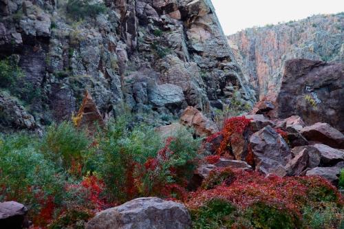 Rock canyon, Rio Cebolla.