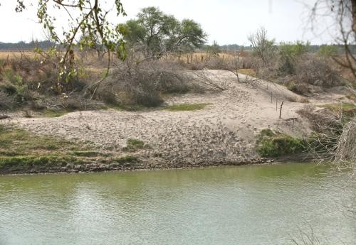 Santa Ana National Wildlife Refuge